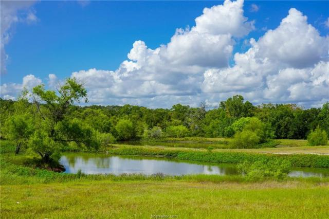 TBD County Road 185, Anderson, TX 77830 (MLS #18014130) :: Cherry Ruffino Team