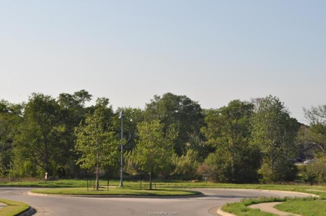 3850 Sagebriar Drive, Bryan, TX 77802 (MLS #18014298) :: RE/MAX 20/20