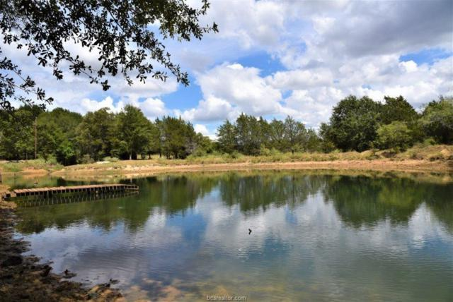 8215 County Road 318 (+/-67 Acres), Caldwell, TX 77836 (MLS #18014484) :: Platinum Real Estate Group