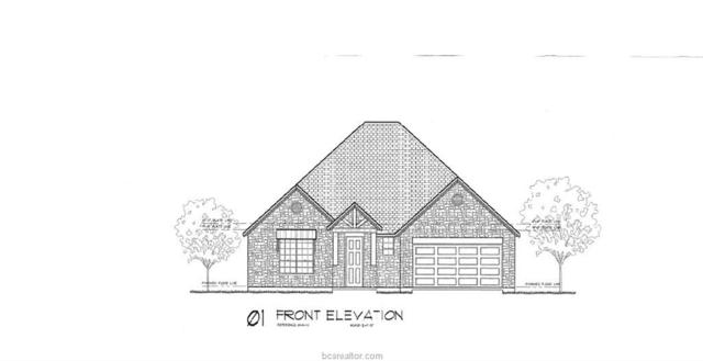 15660 Long Creek Lane, College Station, TX 77845 (MLS #18015552) :: NextHome Realty Solutions BCS