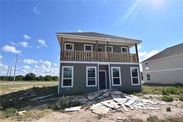 6934 Halter Loop, College Station, TX 77840 (MLS #18015729) :: Treehouse Real Estate