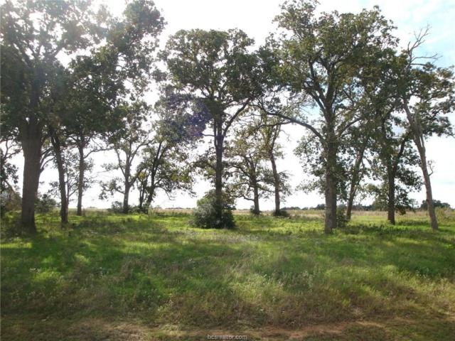 9604 Bishop Bend - King Oaks-Iola, Tx, Iola, TX 77861 (MLS #18016095) :: The Lester Group