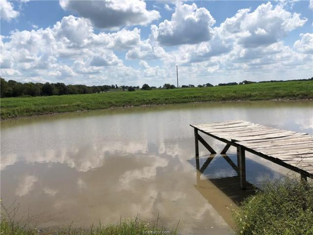 (+/-10ac) TBD Old Hickory Grove (South), Franklin, TX 77856 (MLS #18016101) :: RE/MAX 20/20