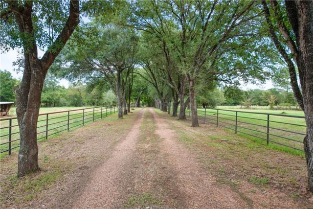 14262 Tonkaway Lake Road, College Station, TX 77845 (MLS #18016177) :: RE/MAX 20/20