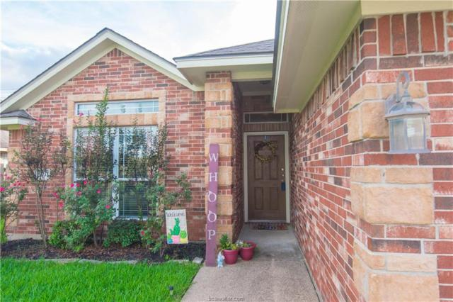 3732 Dove Hollow Lane, College Station, TX 77845 (MLS #18016363) :: Treehouse Real Estate