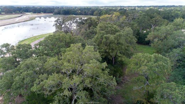 3713 Cooper Court, College Station, TX 77845 (MLS #18016428) :: RE/MAX 20/20