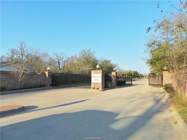 1019 Sanctuary Court, College Station, TX 77840 (MLS #18016493) :: RE/MAX 20/20