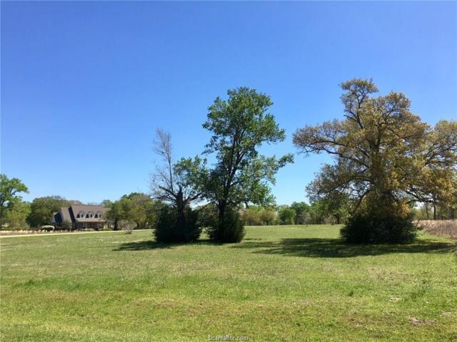 10375 Chamberlain Drive, Iola, TX 77861 (MLS #18016671) :: BCS Dream Homes