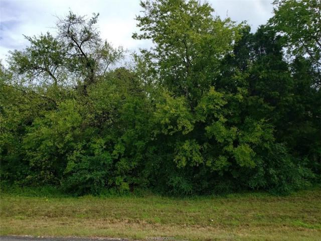6986 Riley Rd, Bryan, TX 77808 (MLS #18016709) :: Treehouse Real Estate