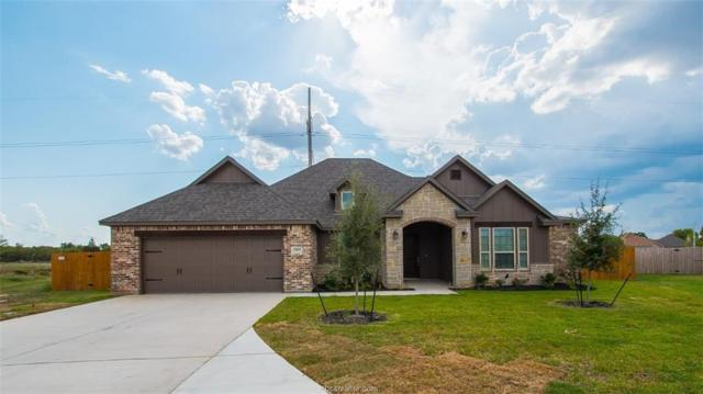 2905 Cistern Court, Bryan, TX 77808 (MLS #18016805) :: The Lester Group