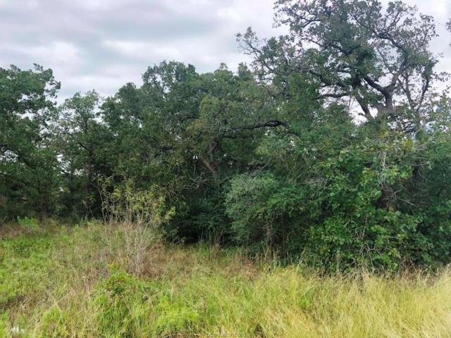 300 Big Berry Road, Somerville, TX 77879 (MLS #18016815) :: RE/MAX 20/20