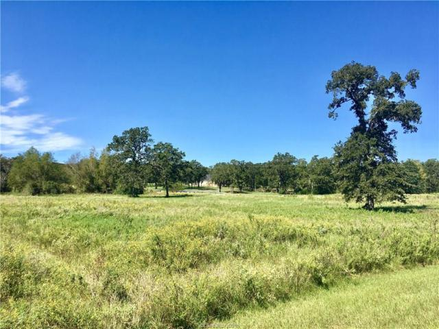 Lot 279 Leigh Court, Iola, TX 77861 (MLS #18016830) :: RE/MAX 20/20