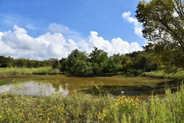 (+/-168 acres) Vaughn Lane, Hearne, TX 77859 (MLS #18016835) :: The Lester Group