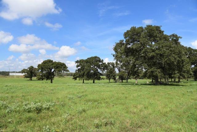 (+/-55 acres) Vaughn Lane, Hearne, TX 77859 (MLS #18016838) :: The Lester Group