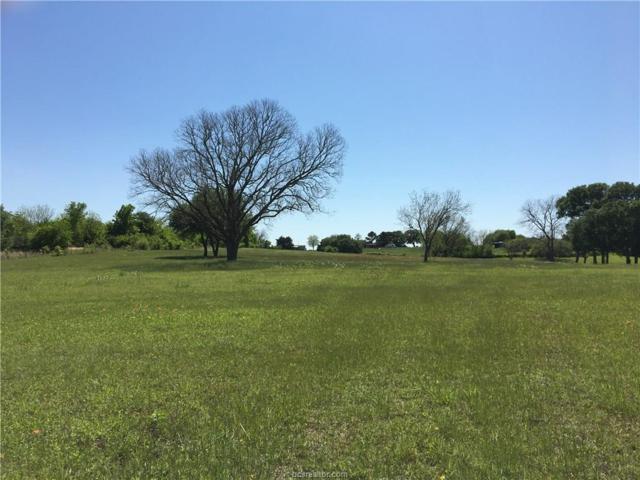 8901 Hwy 36 N, Brenham, TX 77833 (MLS #18016879) :: Cherry Ruffino Team