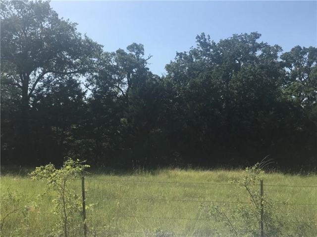 5100 Cr 120, Tract 3, Caldwell, TX 77836 (MLS #18016915) :: Cherry Ruffino Team