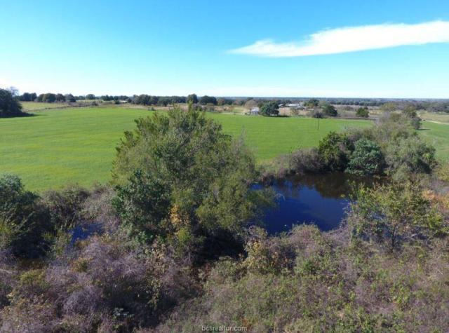 TBD Cr 228, Cameron, TX 76520 (MLS #18018121) :: Treehouse Real Estate