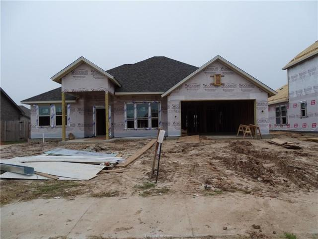 2707 Talsworth Drive, College Station, TX 77845 (MLS #18018237) :: Chapman Properties Group