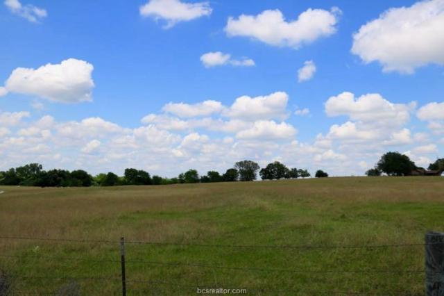 TBD Fm 149, Tract 8, Anderson, TX 77830 (MLS #18018485) :: RE/MAX 20/20