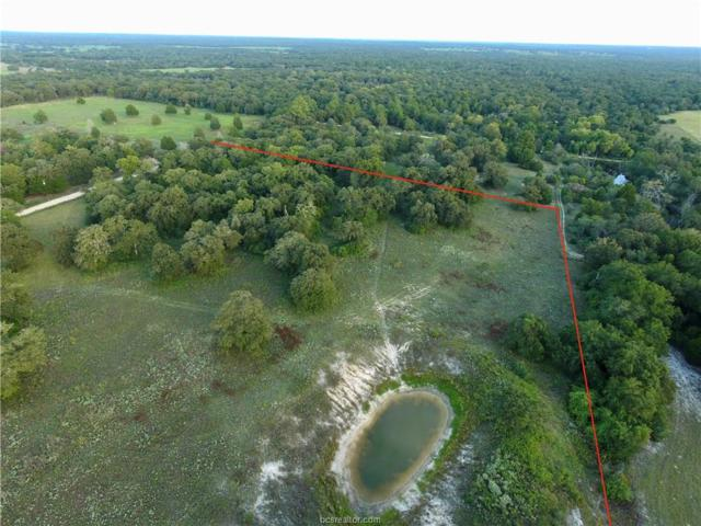 000 County Rd 342 County Road, Milano, TX 76556 (MLS #18018541) :: RE/MAX 20/20