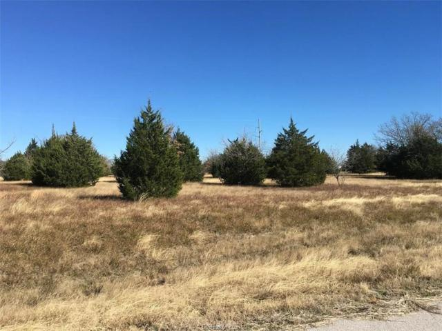 4068 Golden Eagle Drive, Bryan, TX 77808 (MLS #18019160) :: Chapman Properties Group