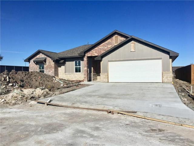 4003 High Creek Court, College Station, TX 77845 (MLS #18019224) :: Chapman Properties Group