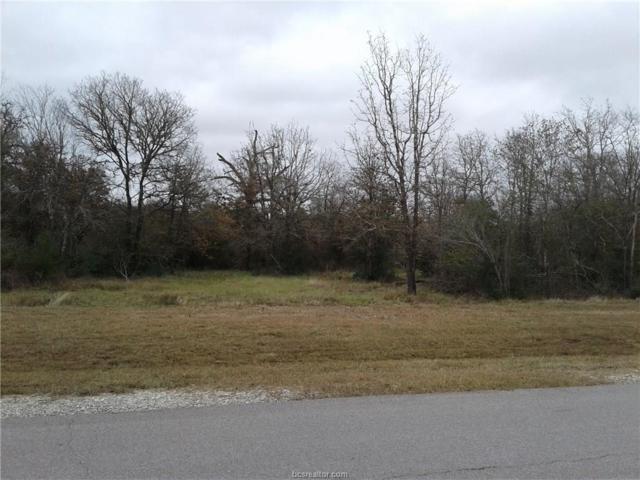 6428 Juliette Trail, Bryan, TX 77808 (MLS #18019279) :: Chapman Properties Group