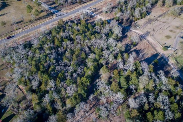 4.393 Fm 1361, Snook, TX 77879 (MLS #19000166) :: Treehouse Real Estate