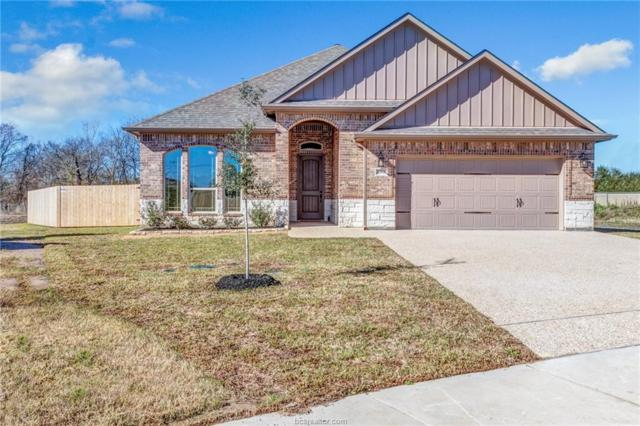 3062 Peterson Circle, Bryan, TX 77802 (MLS #19000169) :: Cherry Ruffino Team