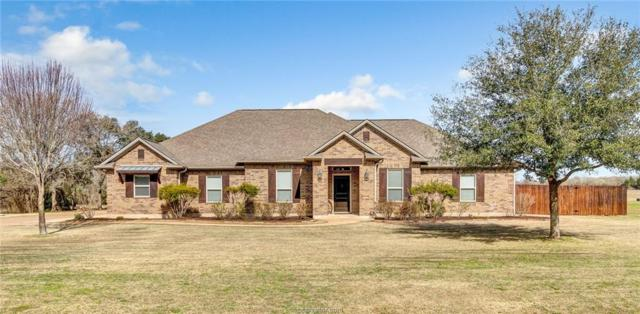 5332 Prairie Dawn Trail, College Station, TX 77845 (MLS #19000230) :: Cherry Ruffino Team