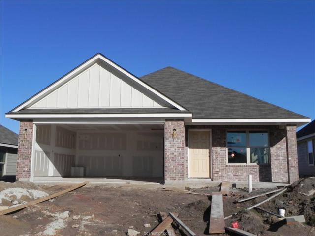 125 Dove Court, Navasota, TX 77868 (MLS #19000343) :: BCS Dream Homes