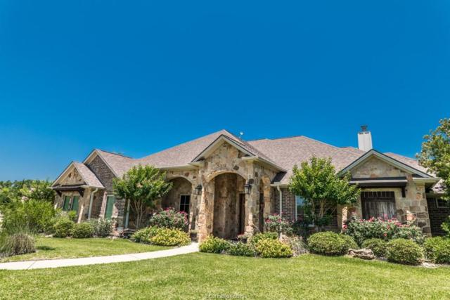 5398 Vintage Oaks Drive, College Station, TX 77845 (MLS #19000378) :: Cherry Ruffino Team
