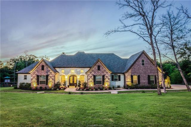 5384 Majestic Oaks Court, College Station, TX 77845 (MLS #19000383) :: Chapman Properties Group