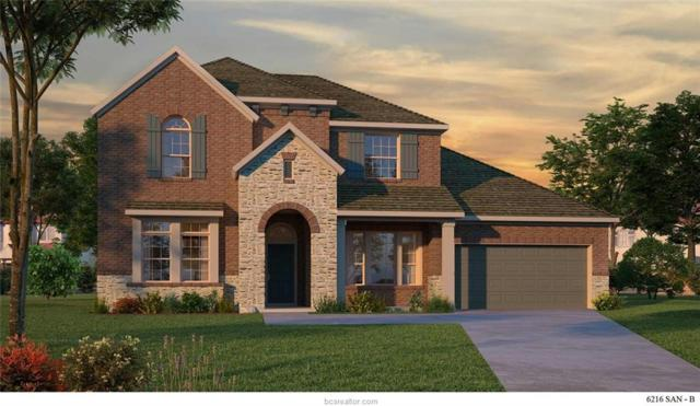 4420 Egremont Place, College Station, TX 77845 (MLS #19000589) :: BCS Dream Homes