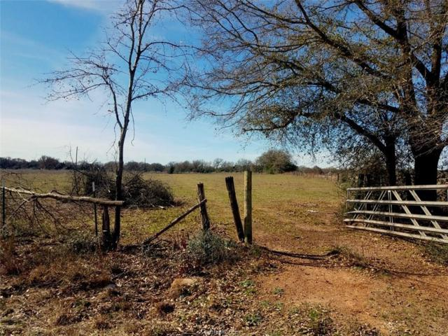 TBD Jack Brewer Rd, Calvert, TX 77837 (MLS #19000803) :: Cherry Ruffino Team