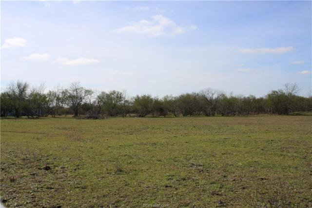 3 Acre Tract Cr 108, Iola, TX 77861 (MLS #19000834) :: Cherry Ruffino Team