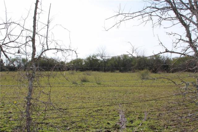 2 acres County Road 108, Iola, TX 77861 (MLS #19000838) :: Cherry Ruffino Team