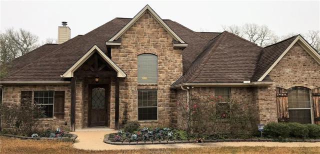 18361 Wigeon Trail Drive, College Station, TX 77845 (MLS #19000841) :: RE/MAX 20/20