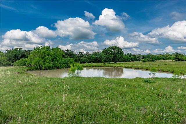 33.35 Acres N Old Springfield Rd, North Zulch, TX 77872 (MLS #19000887) :: Treehouse Real Estate