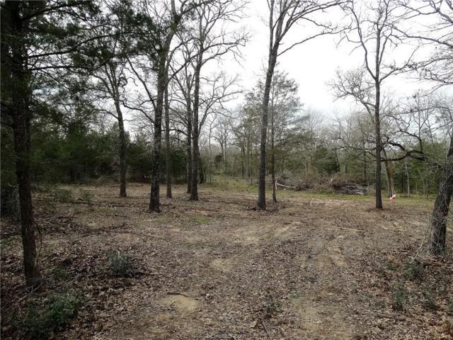11567 La Fountain Pvt Lane, Bryan, TX 77808 (MLS #19001990) :: The Lester Group
