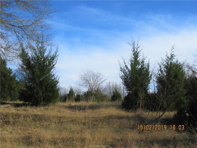 TBD Lot 31 Post Oak Loop, Lake Limestone, TX 76687 (MLS #19002088) :: Chapman Properties Group
