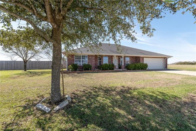 3501 Open Range Court, Bryan, TX 77808 (MLS #19002275) :: Treehouse Real Estate