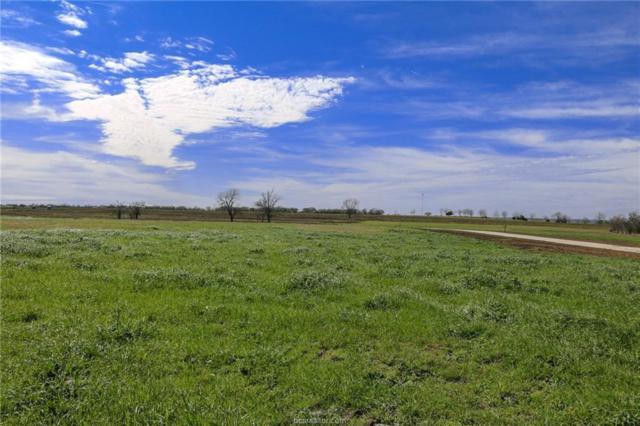 Lot 15 Reagans Way, Navasota, TX 77868 (MLS #19002286) :: BCS Dream Homes