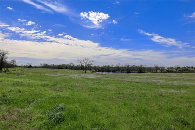 Lot 19 Reagans Way, Navasota, TX 77868 (MLS #19002287) :: NextHome Realty Solutions BCS