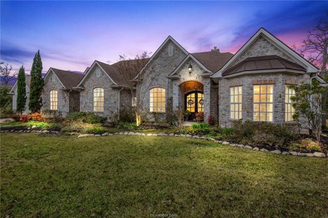 3057 Paleo Point, College Station, TX 77845 (MLS #19002437) :: Treehouse Real Estate