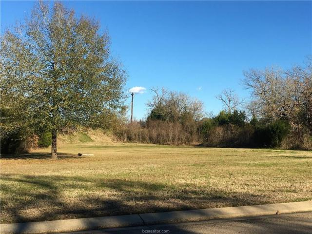 9999 Highway 6 South/Wayfarer Highway, College Station, TX 77845 (MLS #19003655) :: Treehouse Real Estate