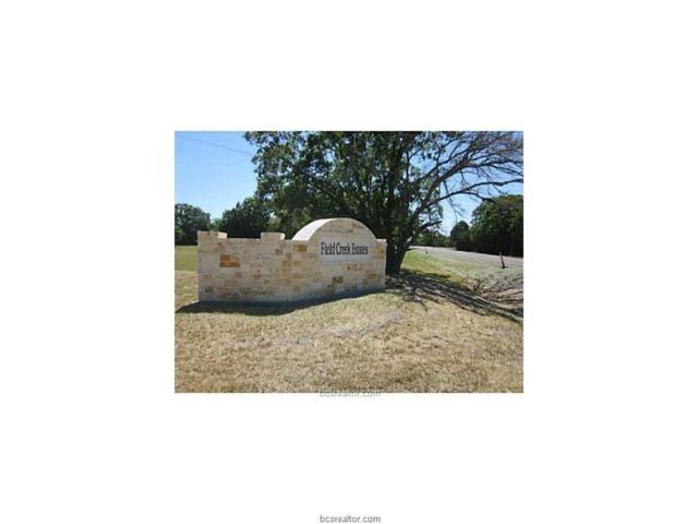 7532 Field Creek Estates Drive, Bryan, TX 77808 (MLS #19003946) :: The Lester Group