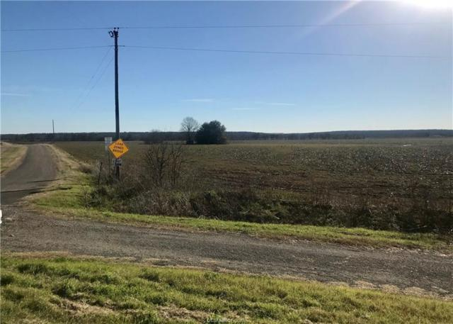 204 County Road 147, Other, TX 76518 (MLS #19004223) :: Treehouse Real Estate