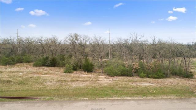 5205 Ruddy Duck Drive, College Station, TX 77845 (MLS #19004316) :: BCS Dream Homes