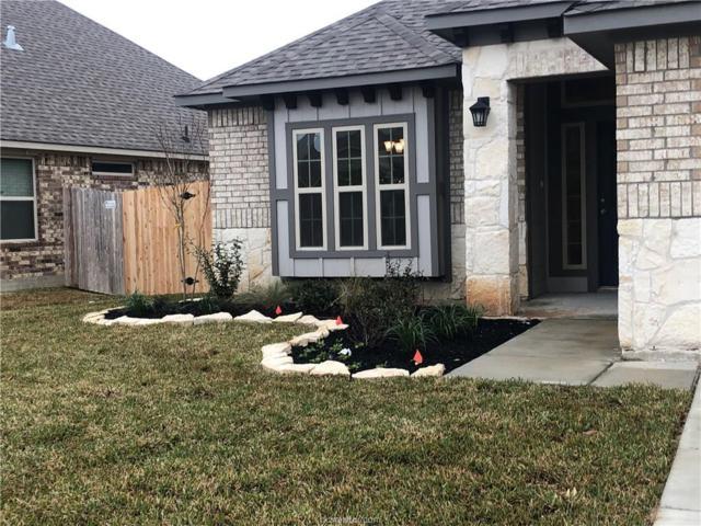 4105 Bridgewood Court, College Station, TX 77845 (MLS #19004500) :: Treehouse Real Estate